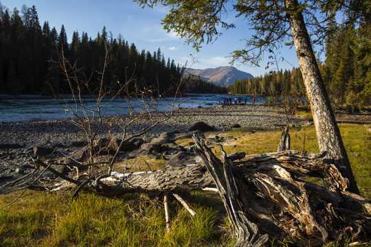 新疆阿勒泰喀纳斯湖景致图片
