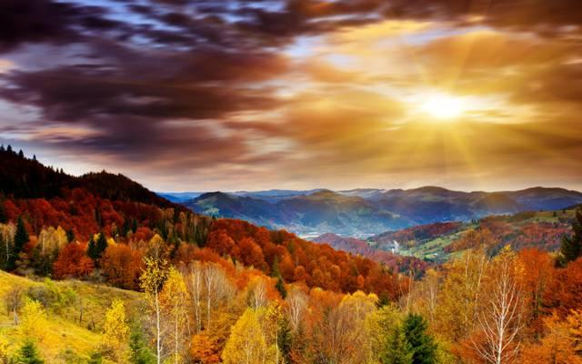 云,秋天,天空,黎明,阳光,森林,树木,山脉