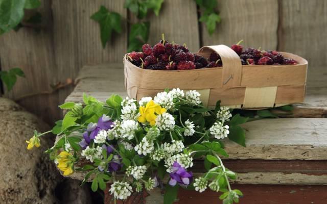 浆果,篮子,桑,,野花