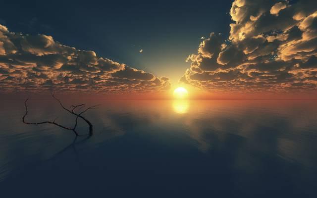 表面,科,艺术,海,树,地平线,云,日落