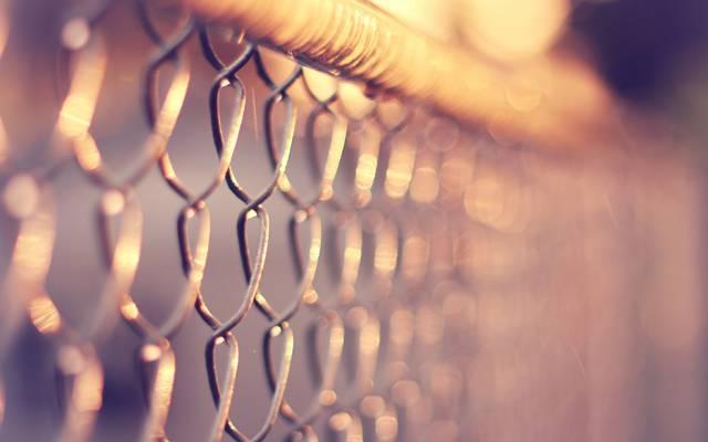 热,宏观,网,围栏,网格