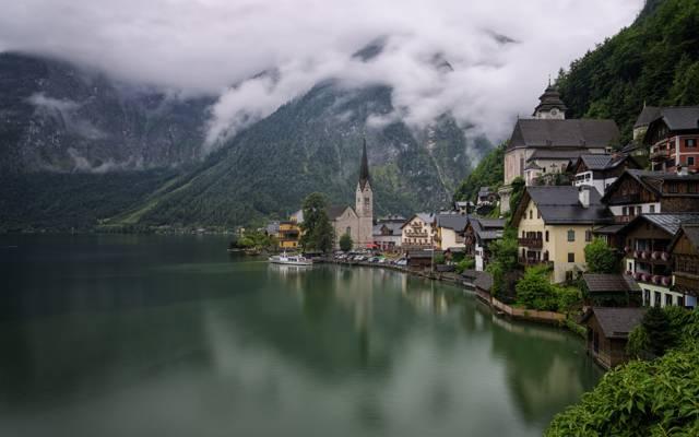 湖,哈尔施塔特,山,奥地利,家,岸,森林