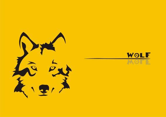狼,黄,狼
