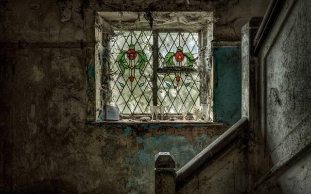 内政,梯子,窗口