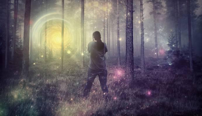 站在森林高清壁纸的灰色衬衫的人