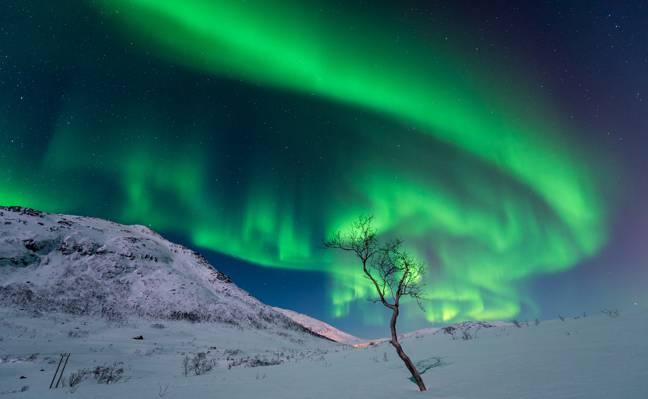 灯,雪,山,冬天,树,夜,天空,星星