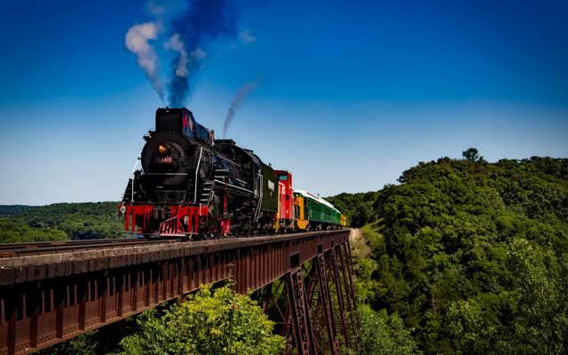 森林,铁路,天空,太阳,火车,树木,组成,桥梁