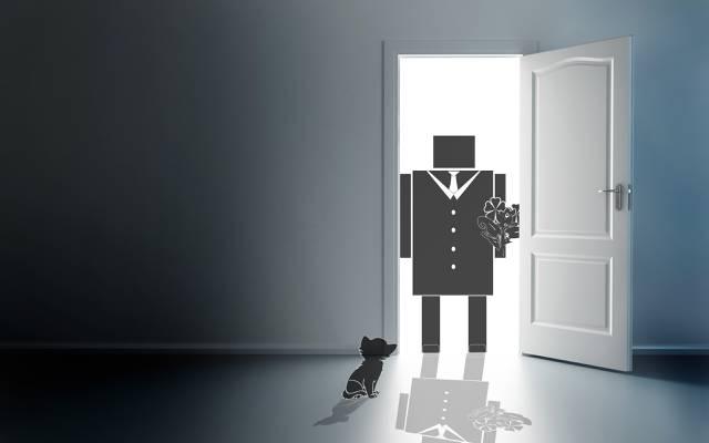 花,心情,门里的光,黑白,门,猫