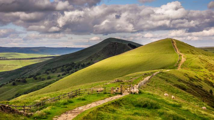 Wallpaper英格兰,篱笆,夏天,丘陵,绵羊,天空,云彩