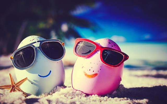 鸡蛋,眼镜,快乐,海滩,搞笑,可爱,夏天,热带