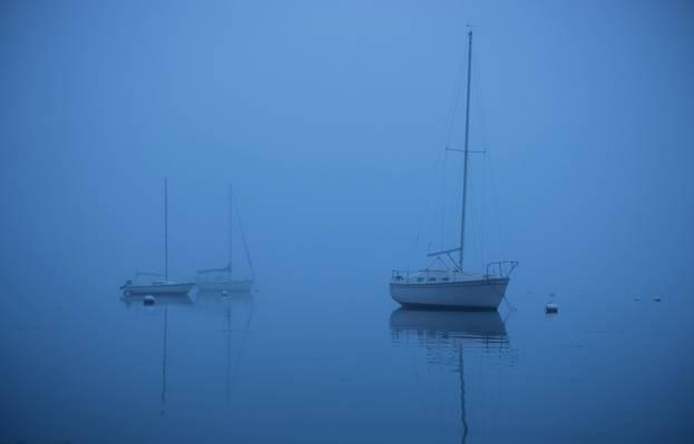 雾,海,船,游艇