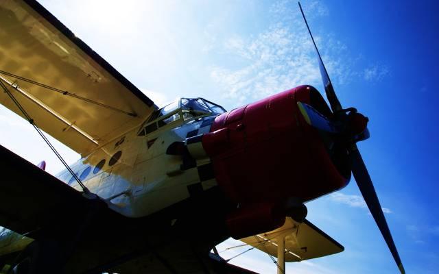 安-2,飞机,天空,玉米,安-2,安东诺夫