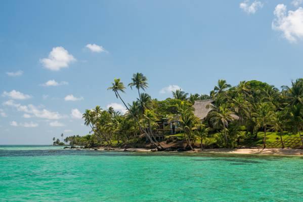 海,棕榈树,房子,热带地区,海岸,海滩