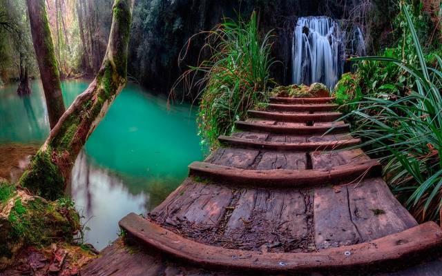 壁纸桥,瀑布,树木,加泰罗尼亚,水,岩石,草,森林
