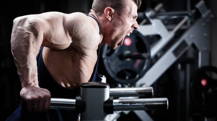 壁纸力量,三头肌,健美运动员,肌肉武器,锻炼,权力,尖叫