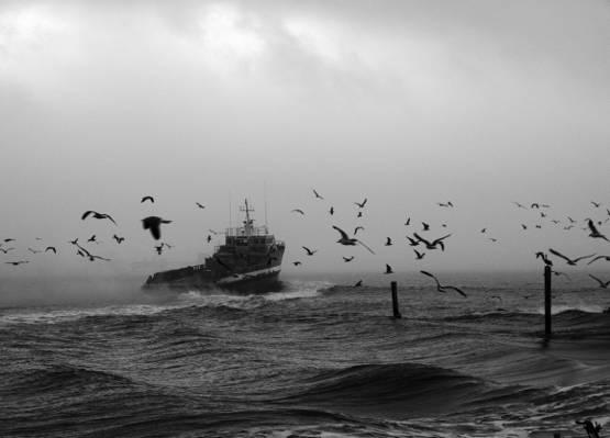 黑暗的天空高清壁纸下的船上的灰度照片