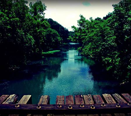 绿色的河流