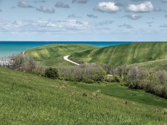 绿草领域在白天高清壁纸的风景视图