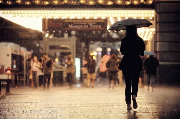返回,下雨,芝加哥,人,女孩,人行道,美国,伊利诺伊州,伞,城市景观,城市场景,街道