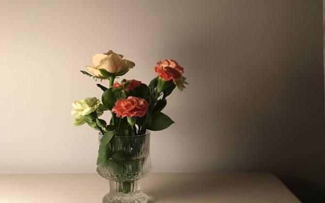 母亲节唯美花卉桌面壁纸