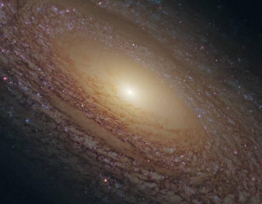 NGC 2841,北斗七星,螺旋星系,星座