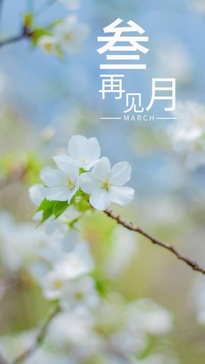 三月再见,为爱付出