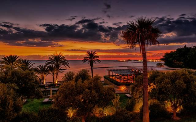 棕榈树,树木,度假村,海岸,灯,海,晚上,热带地区,天空,地平线,塞浦路斯,云,...