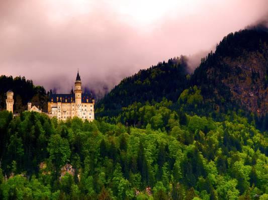 空中照片的白色和黑色的城堡与绿树照片,新天鹅堡城堡高清壁纸