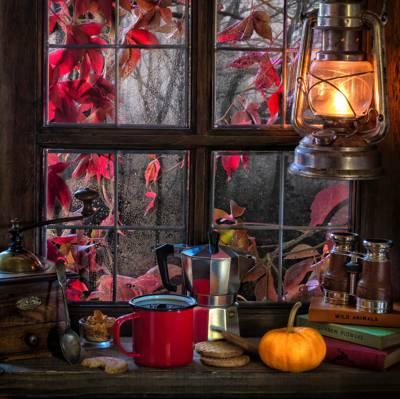 风格,杯子,书籍,窗口,饼干,咖啡,雨,双筒望远镜,静物,南瓜,灯笼,秋季,咖啡研磨机