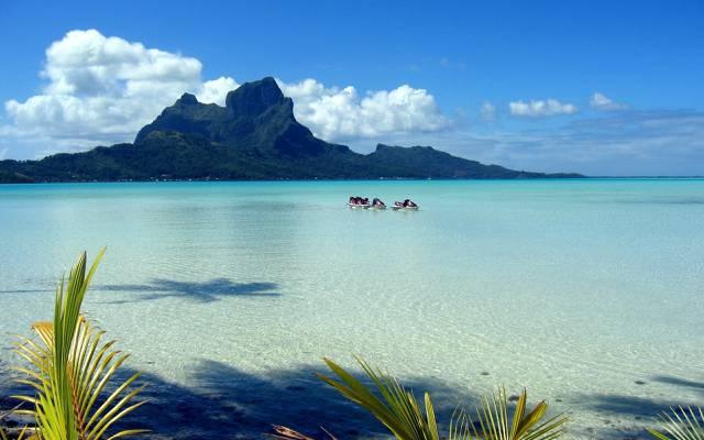 海,棕榈树,天空,海岸,波利尼西亚,云,叶子