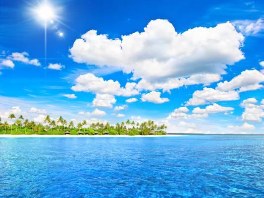 棕榈树,天堂,度假,岛,棕榈树,阳光,海滩,海,海,夏天,热带,海洋,热带地区