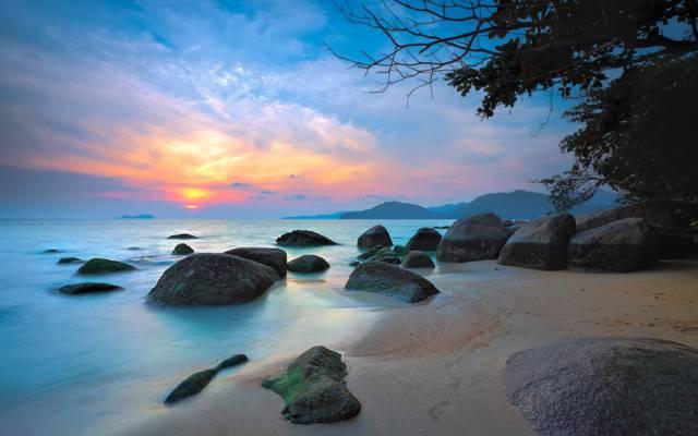 海,树,石头,山,发光,天空,云彩