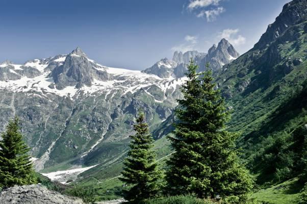 夏天,自然,山,森林,阿尔卑斯山