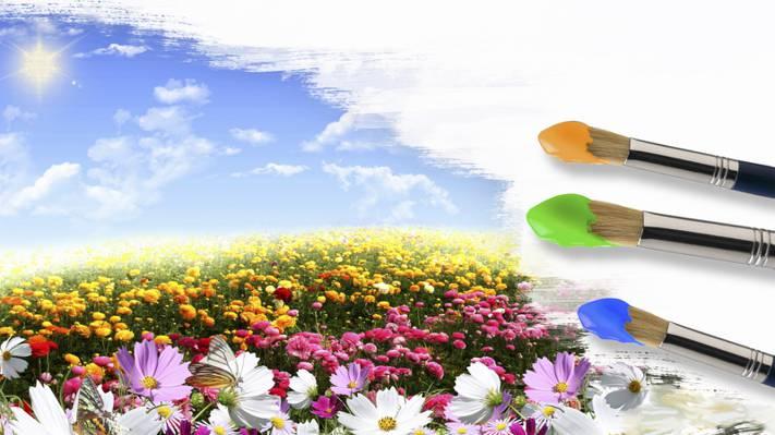 壁纸太阳,天空,画笔,Field.colors