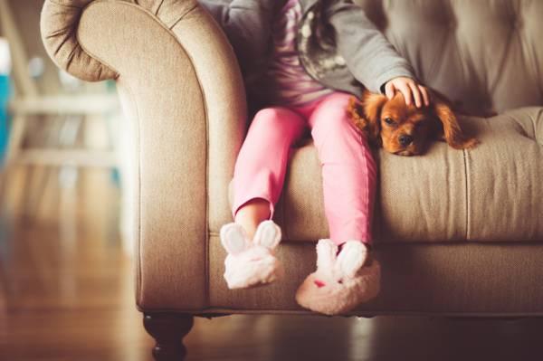 孩子坐在棕色的狗旁边的沙发高清壁纸