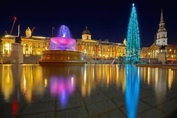壁纸假期,英格兰,伦敦,特拉法加广场,灯,树,圣诞节,喷泉
