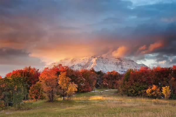山,犹他州,状态,Timpanogos,Wasatch,秋天,山脉,美国