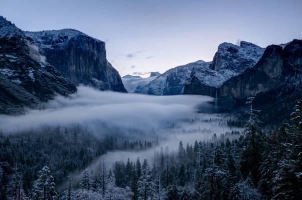 雾森林和山,优胜美地高清壁纸