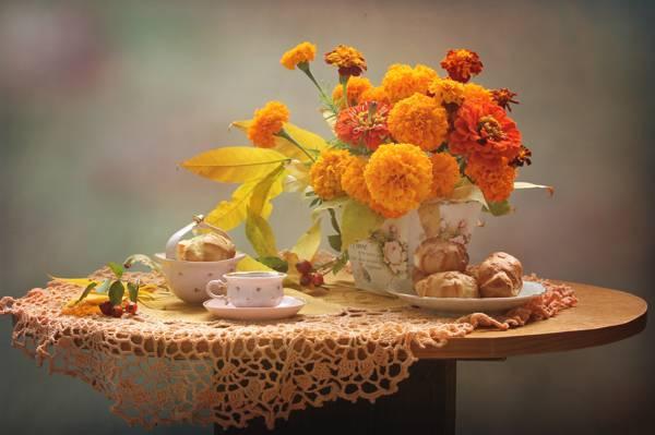 甜点,杯,秋天,静物,万寿菊