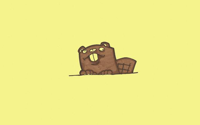 极简主义,动物,尾巴,海狸,窥视,海狸,黄色背景