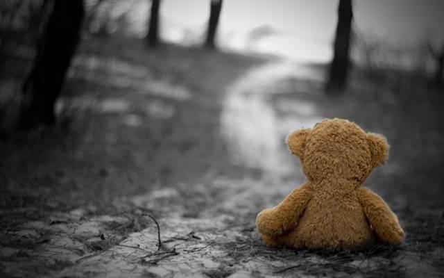 悲伤,寒冷,孤独,玩具,怀旧,悲伤,秋天