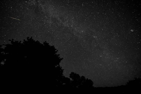 壁纸晚上,树木,剪影,空间,星星