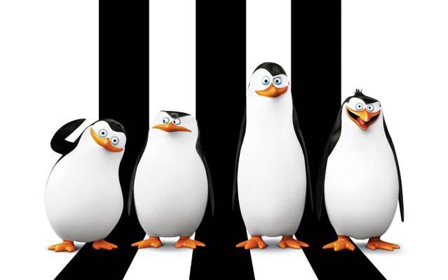 里科,船长,Kowalski,卡通,下士,分类,Kowalski,马达加斯加的企鹅,Prapor,船长,企鹅...