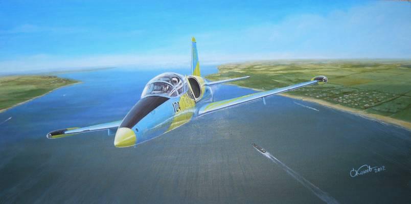 """""""信天翁"""",捷克斯洛伐克,河,作战,艺术,L-39,船,训练,岸,航空,天空,地平线,飞机"""