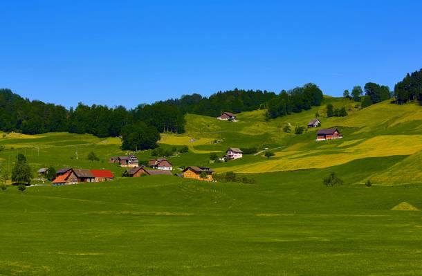 天空,田野,丘陵,家园,树木,草地