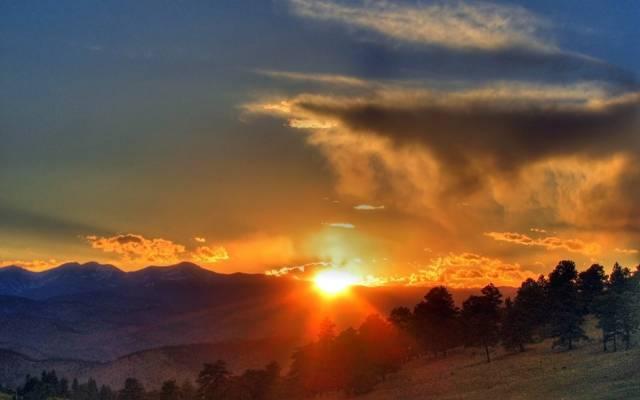 日落,日出,太阳,地平线,云,天空,云,光,斜坡,射线,树,森林,...