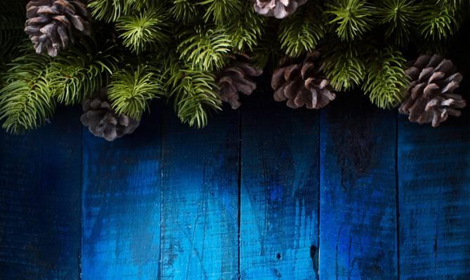 圣诞节,新年,圣诞快乐,颠簸,节日庆典,装饰,快乐,圣诞节,树,圣诞节,新...