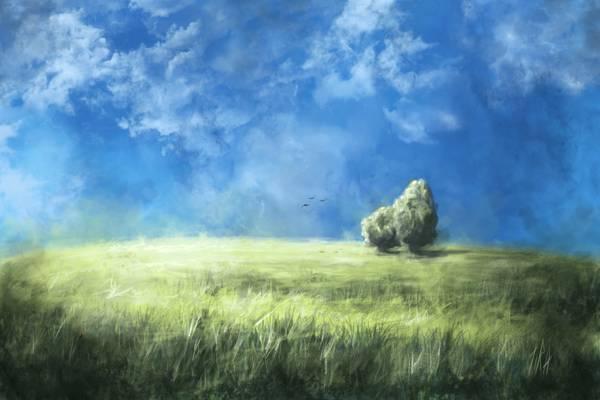 艺术,自然,树木,鸟,田地,天空,草,云