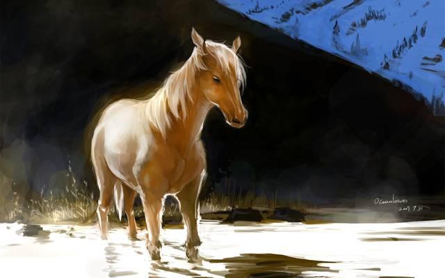 马,光,艺术,小山,红色,水,海洋,马,pixiv