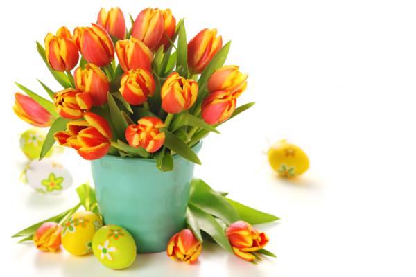 鲜花,鸡蛋,花束,桶,郁金香,复活节